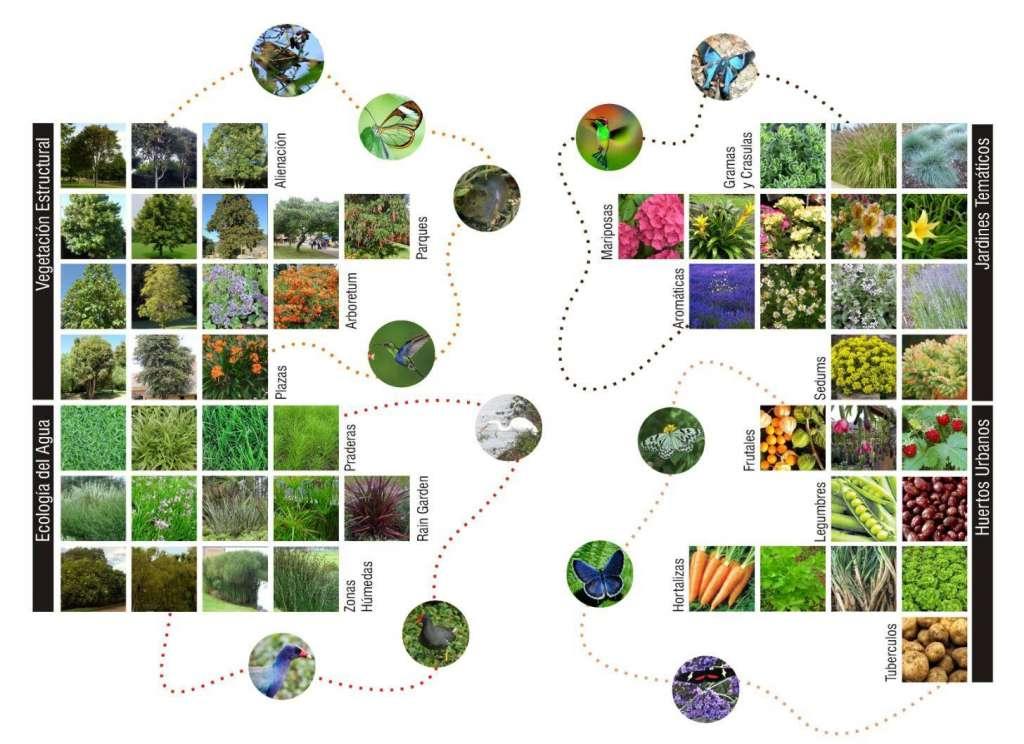 Ciudade ES+Verdes: diseñando con la naturaleza